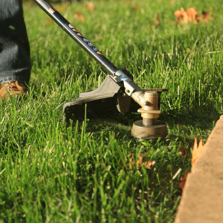 Difference between Lawn Edger and a String Trimmer - Cutting edge - EdgeMyLawn